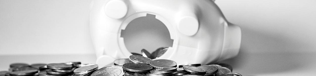 Geldzaken voor de online onderneemster | Handige tips en informatie voor de online onderneemster (in spé) | De Online Onderneemster