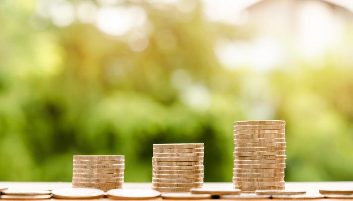 Column _ Verdeel je inkomsten _ Handige tips en informatie voor de online onderneemster (in spé) _ De Online Onderneemster (1)