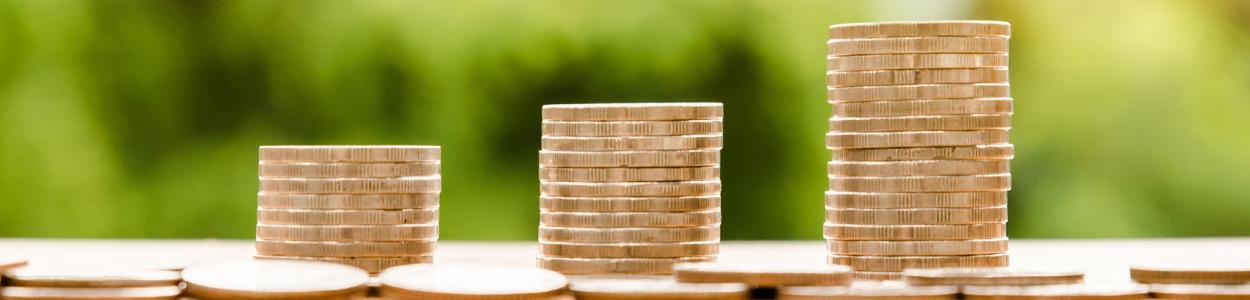 Column _ Verdeel je inkomsten _ Handige tips en informatie voor de online onderneemster (in spé) _ De Online Onderneemster